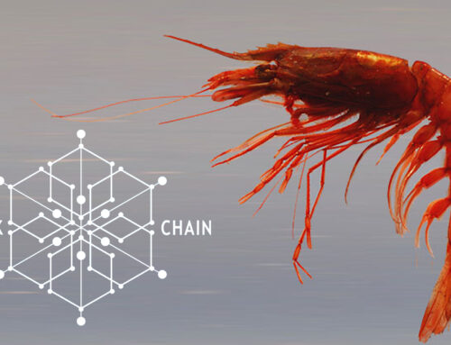 Connecting seafood producers to consumers via blockchain